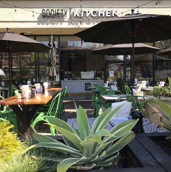 Fitdog Sports Club _ Dog Blog _ Best Dog-Friendly Brunch Spots in Santa Monica